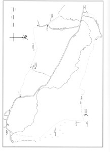 Walk 8 Map